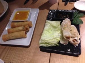 Vegetable spring rolls & vietnamese paper rolls